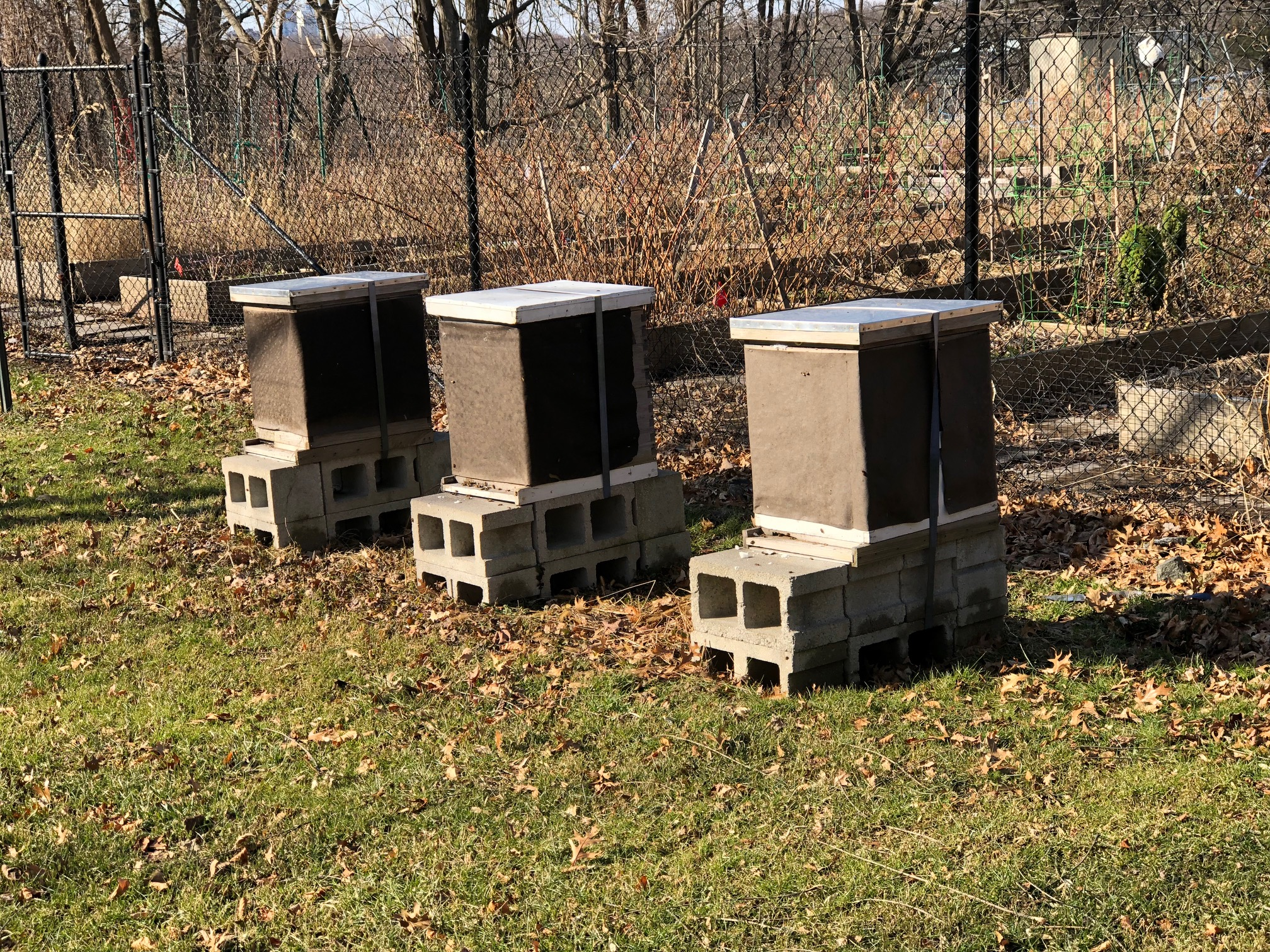 116dc7a375374 We are excited to announce our first meeting of the Hudson Valley Natural  Beekeepers group on Saturday, March 9th (rescheduled from March 2nd due to  snow).